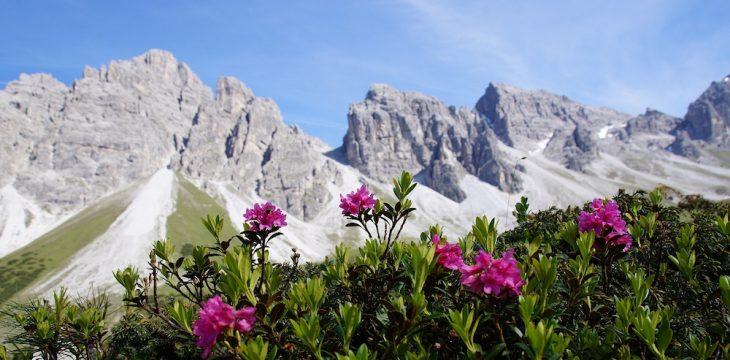 Lebensgefühl Berg